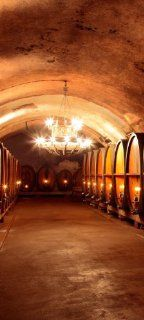 Türtapete Weinkeller TT354 90x200cm Tapete Bordeaux Chateau Wein Küche & Haushalt