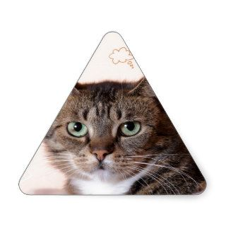 Brown tabby cat with amazing green eyes triangle stickers