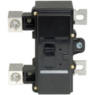 Square D by Schneider Electric 150 Amp Double Pole Main