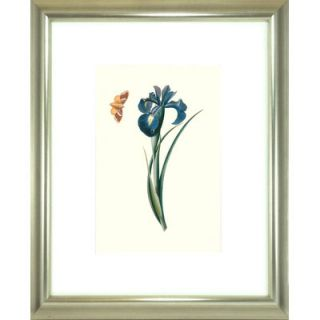 Indigo Avenue Floral Living Flora and Fauna II Framed Wall Art
