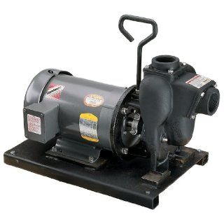 "Banjo 234PIE51 2"" Cast Iron Pump with 5.0 HP Single Phase Electric Motor: Industrial Pumps: Industrial & Scientific"