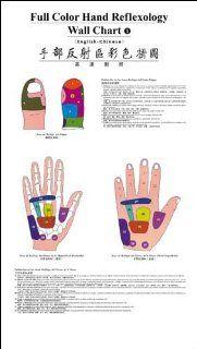 Full Color Hand Reflexology Wall Chart (English Chinese) (9787117080101): Dong FuHui: Books