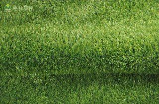 Premium Synthetic Turf Artificial Grass Area Rug (19.50 SF/pc) Perfect For Your Indoor, Patio and Outdoor The Certain Area   3/8 Inch Type with 15/10cm Stitch Rate and 25mm Pile Height, It Looks Real and Soft Touch, Our Product Has Added Another 23% in Plu