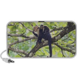 Mother and Baby Monkey Notebook Speakers