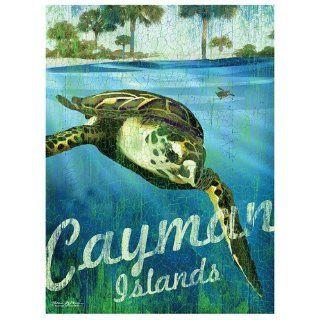 Santa Barbara Design Studio Cayman Islands Mini Wall/Desk Plaque by Patrick Reid O'Brien, 4 by 6 Inch