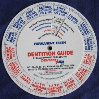 Dentition (Tooth Eruption) Guide/ Practitioner and Dental Student Exam Study Aid Reference Tool Gift Immediately and Correctly Gives the Answers When Every Primary (Also Called Baby Teeth, Milk or Deciduous Teeth) and Permanent (Adult) Teeth Form, Erupt (S