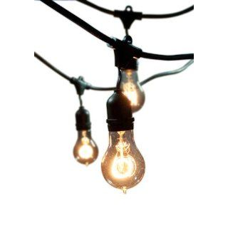 Bulbrite String15/E26 A19KT Outdoor String Light with Vintage Edison Bulbs with 15 Lights, 48 Feet   Incandescent Bulbs