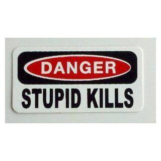 """3   Danger Stupid Kills Hard Hat / Helmet Stickers 1"""" x 2"""" Automotive"""