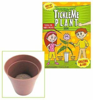 TICKLE ME PLANT BIRTHDAY PARTY FAVOR Toys & Games