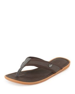 Carros Mens Thong Sandal, Brown   Lacoste   Brown (10D)