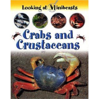 Crabs and Crustaceans (Looking at Minibeasts): Sally Morgan: 9781593890407: Books