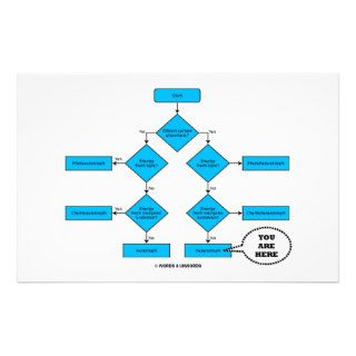 Heterotroph Flow Chart   You Are Here Customized Stationery