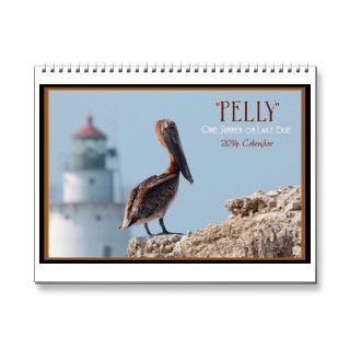 """Pelly"" One Summer on Lake Erie 2014 Wall Calendar"