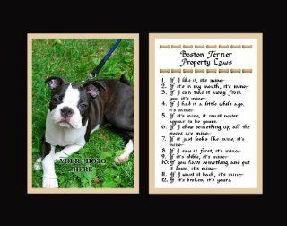Boston Terrier Property Laws Wall Decor Humorous Pet Dog Saying Gift   Decorative Plaques