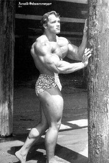 Arnold Schwarzenegger pumped up POSTER 21 x 31 grainy black & white as he looked in 70s (poster sent from USA in PVC pipe) : Home And Garden Products : Everything Else