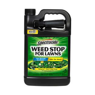 Spectracide Weed Stop, For Lawns, 128 fl oz (1 gal) 3.7 l   Lawn