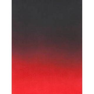 Botero  #418 Graduated Muslin Background M41857