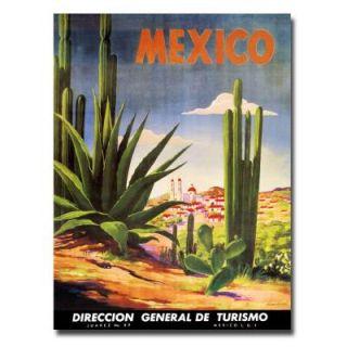 Trademark Fine Art 18 in. x 24 in. Mexico Cacti Canvas Art V8112 C1824GG