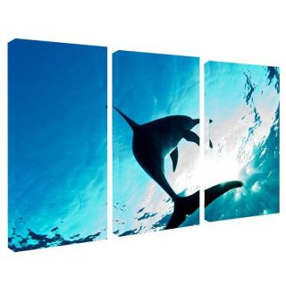 Chris Doherty Dolphin Canvas Art 3 piece Set