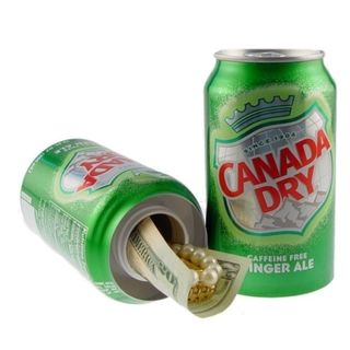 Ginger Ale Can Safe   17468607 The Best