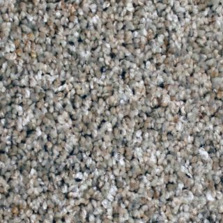 STAINMASTER Essentials Channing Cavern Point Textured Indoor Carpet