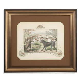 Bassett Mirror Belgian Luxe A Group of Hounds Framed Painting Print