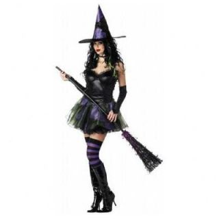 California Costumes Wicked Witch of the West Costume