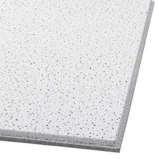 Armstrong Fine Fissured Homestyle 16 Pack White Fissured 15/16 in Drop Acoustic Panel Ceiling Tiles (Common: 24 in x 24 in; Actual: 23.704 in x 23.704 in)