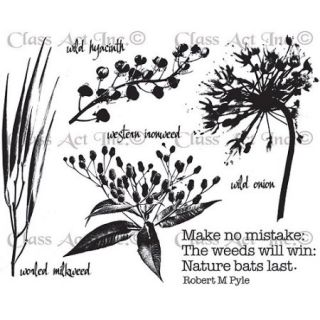 "Class Act Chapel Road 5.75"" x 7.75"" Cling Mounted Rubber Stamp Set"