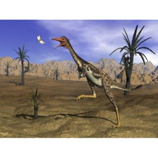 Mononykus dinosaur chasing a dragonfly in the desert surrounded with williamsonia trees Poster Print (16 x 12)
