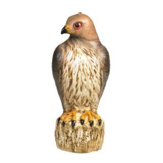 Bird B Gone® Red Tailed Hawk Decoy (MMRTH1)   Lawn Ornaments