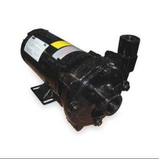 DAYTON 2ZXN1 Centrifugal Pump, 3/4 HP, 3Ph, 208 230/460V