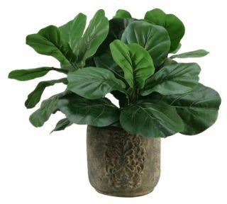 Silks Fiddle Leaf Fig Silk Plant with Stone Planter   Silk Plants